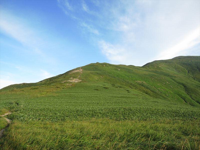 縦走路にはさわやかな草原も