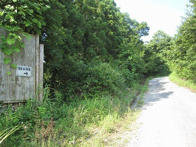 ④林道横に手書きの看板あります