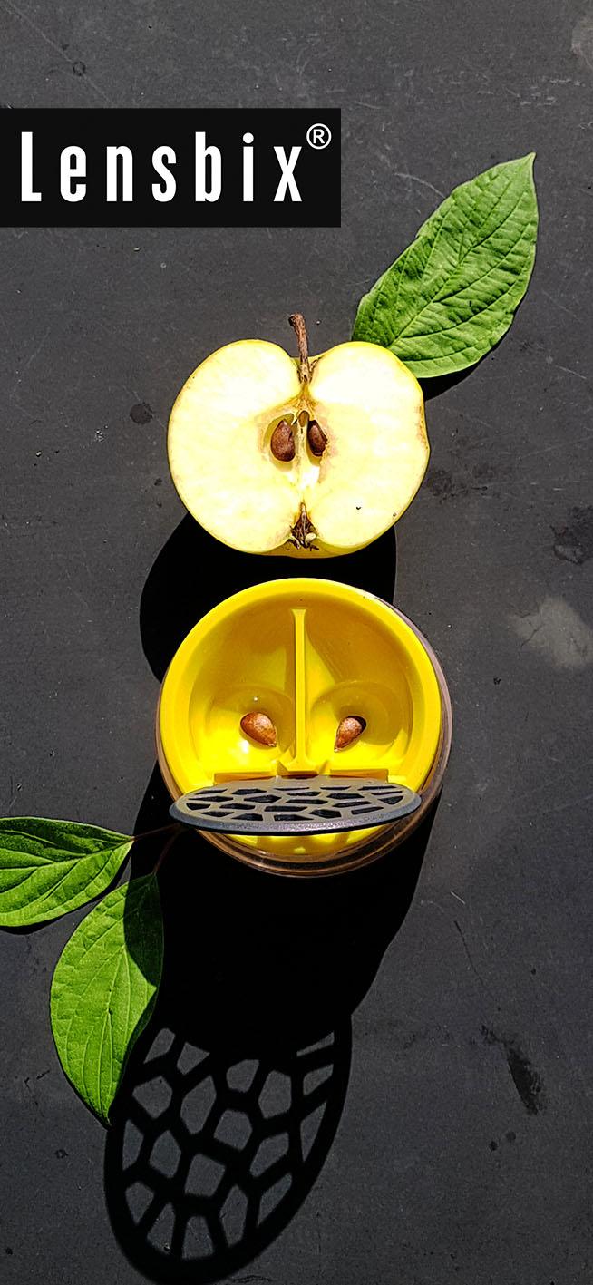 Lensbix  zweimal hinsehen  - Das Gute vom Obst in den Mund und in das Auge. / Kontaktlinsenbehälter / Kontaktlinsenbox / Box für Kontaktlinsenaufbewahrung / Die Schönheit der Natur bewußt imitiert!