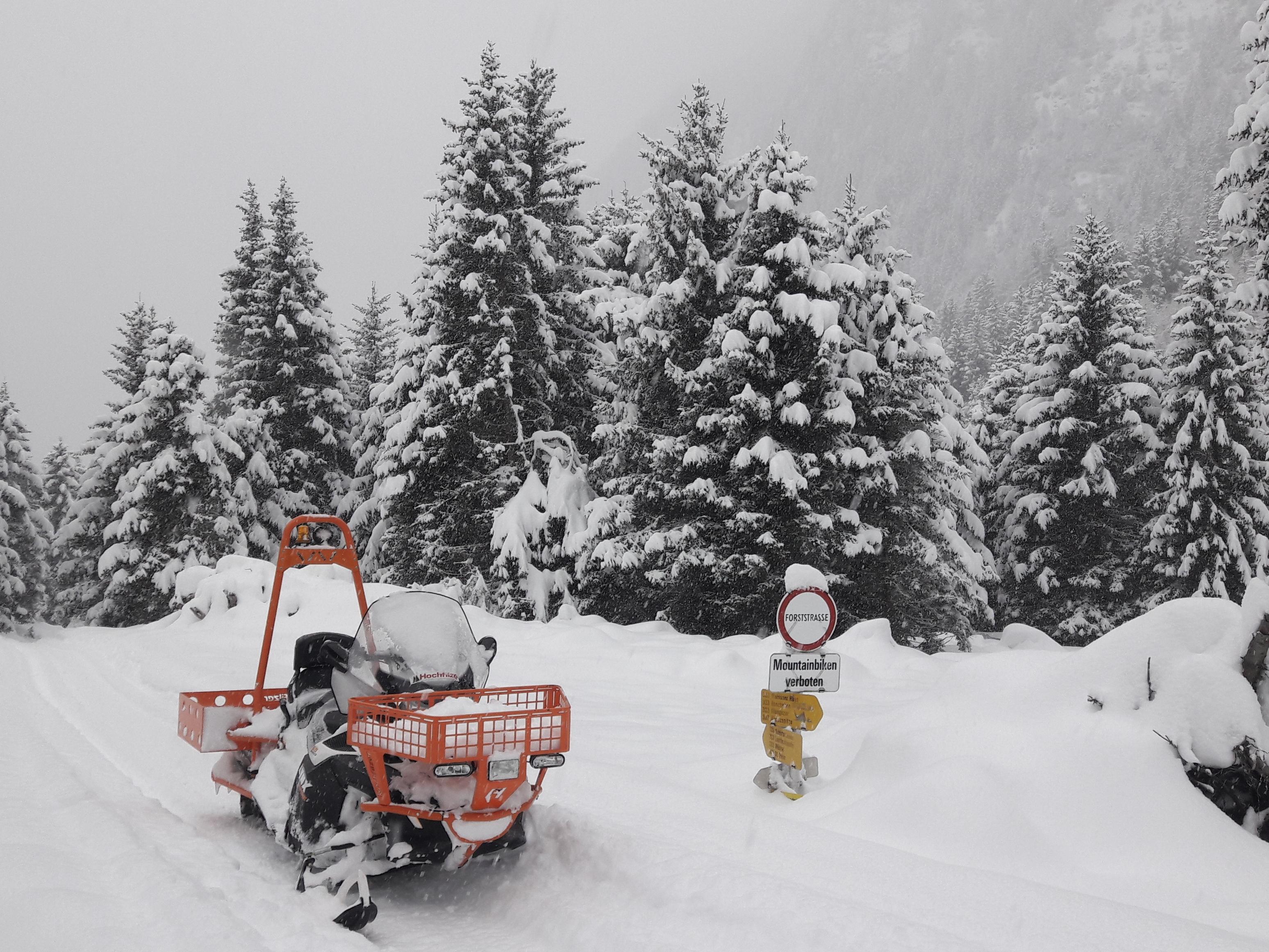 Naturpädagogik im Schnee