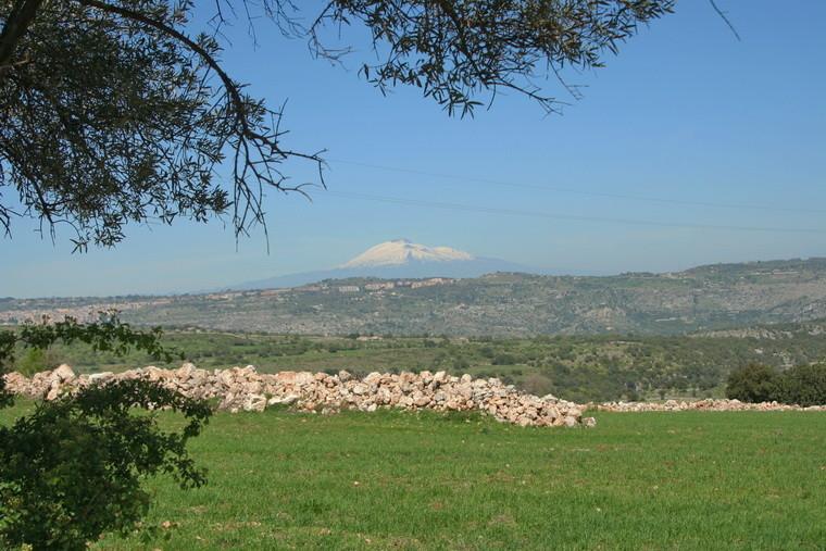 """36                   Blick auf den """"Etna"""""""