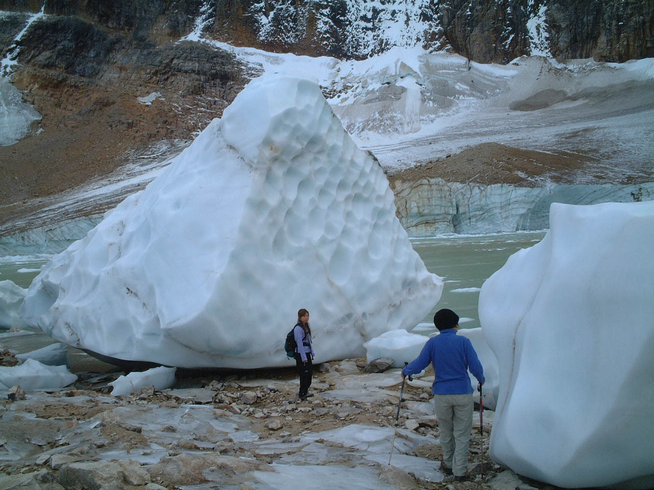氷河のかけら、エディスキャベルハイキング