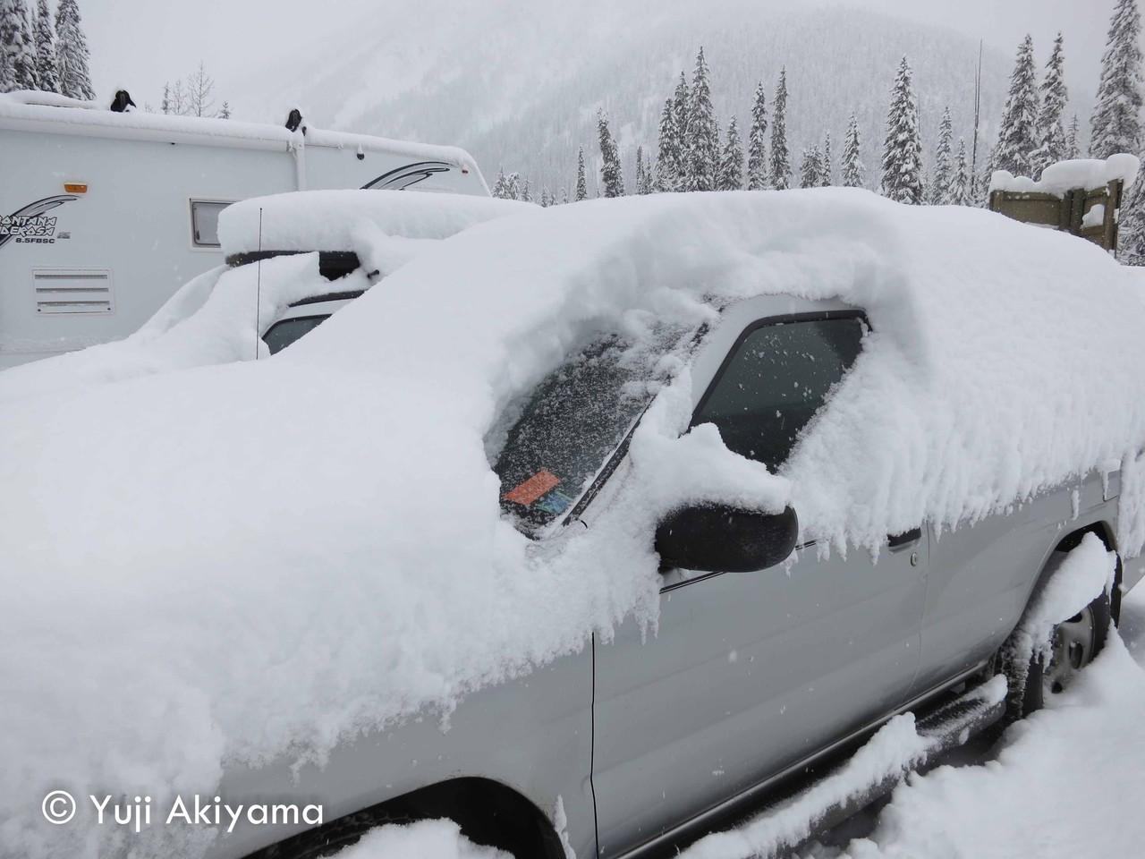 1日で降り積もった雪