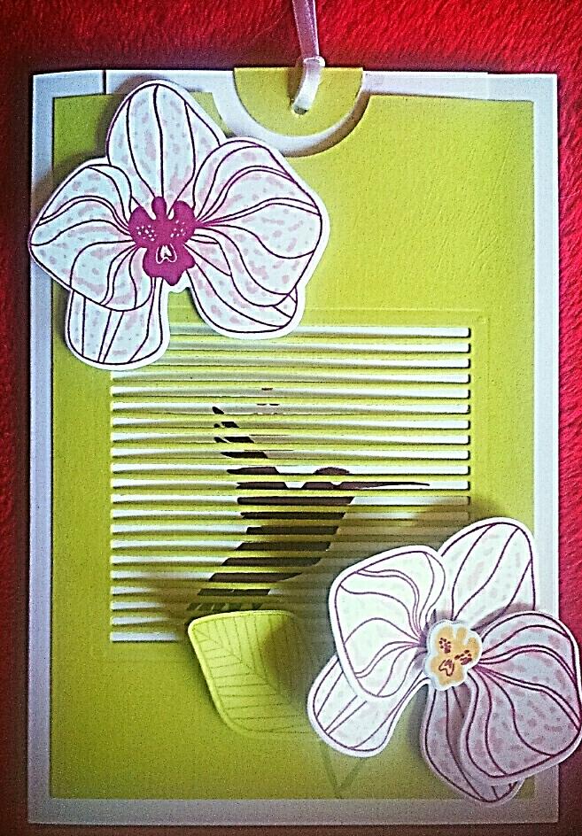 """""""Orchideenzweig"""" trifft auf """"Flatterhaft"""""""