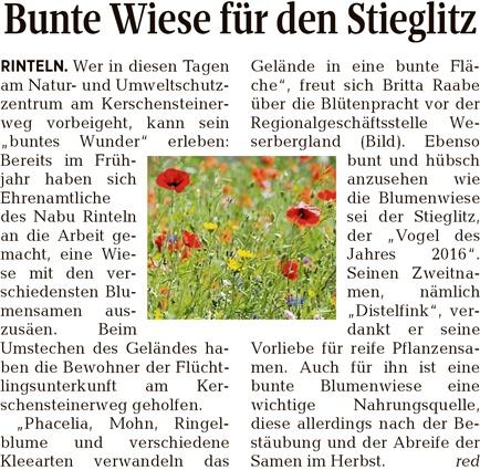 Presseartikel - mit frdl. Erlaubnis der Schaumburger Zeitung