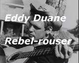 """""""La guitare de Duane Eddy propulse son solaire Rebel Rouser dans mon plexus."""" (p.63)"""