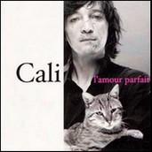 """""""Je crois que je ne t'aime plus, comme dans cette vieille chanson de Cali."""" (p.25)"""