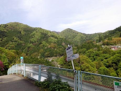 杉平バス停15:02から下山してきた山を望む