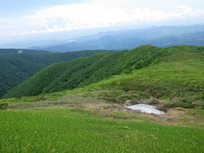 根菅岳直下のお花畑、遠く御所湖