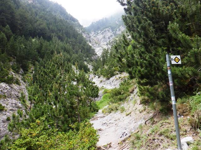 4号路登山道、大きな谷を渡る