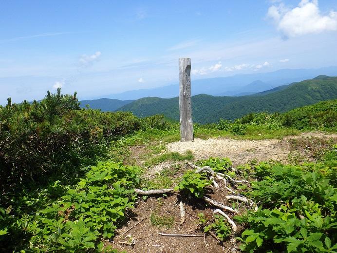 根菅岳9:58~10:06 1,345m本日の最高点