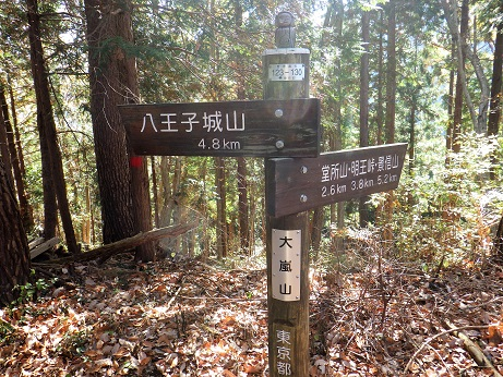 大嵐山11:42~12:13