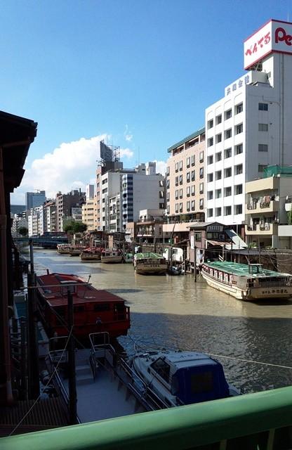 神田川は豪雨で濁っていた