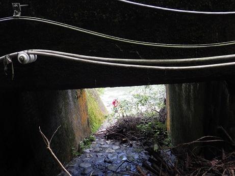 トンネル潜る