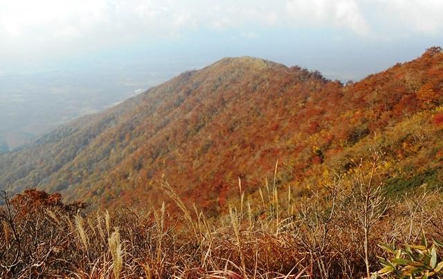 8・07上蒜山下り先程登ってきた槍ヶ峯 陽光に紅葉見事
