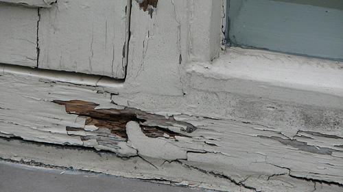 Herstel werkzaamheden aan Kozijnen - hout rot