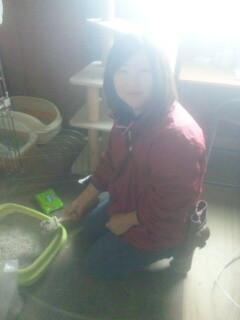 猫砂の掃除をして下さる学生ボランティアさん