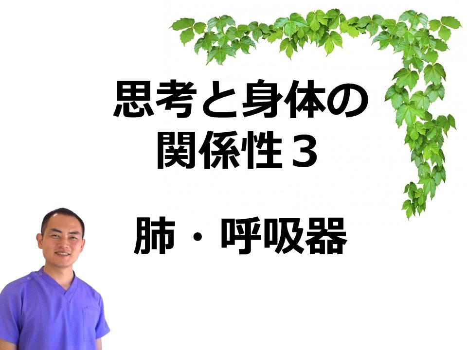 思考と身体の関係性3 肺と呼吸器