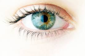 欧米人の瞳は青い瞳と言われ、薄い色をしている。