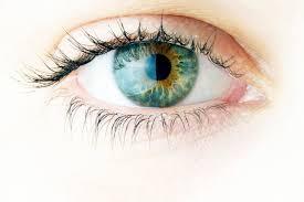 欧米人の瞳は青い瞳と言われ、薄い色をしているので黄斑変性症になりやすいと言われています。