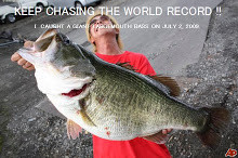 The full scale poster of World Record Bass