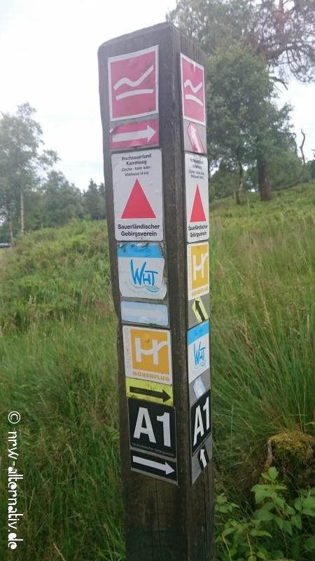 Wegweiser mit Winterberger Wanderrouten: A1, SAuerländer Höhenflug, Rothaarsteig und andere