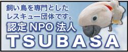認定NPO法人TSUBASAホームページ
