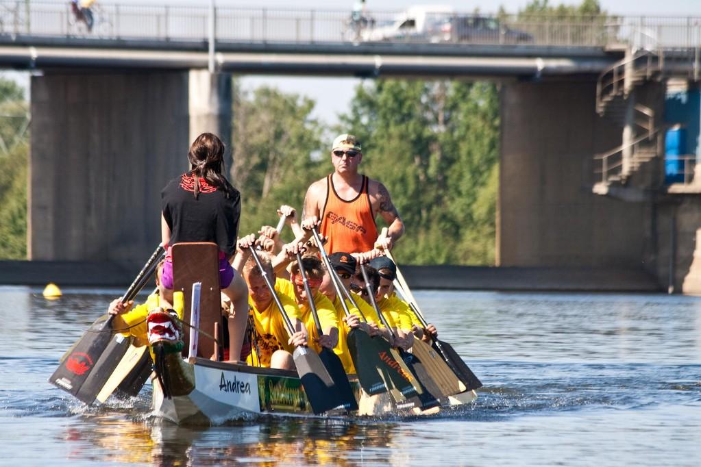 seit 10 Jahren auf dem Muldestausee etabliert - Drachenbootrennen