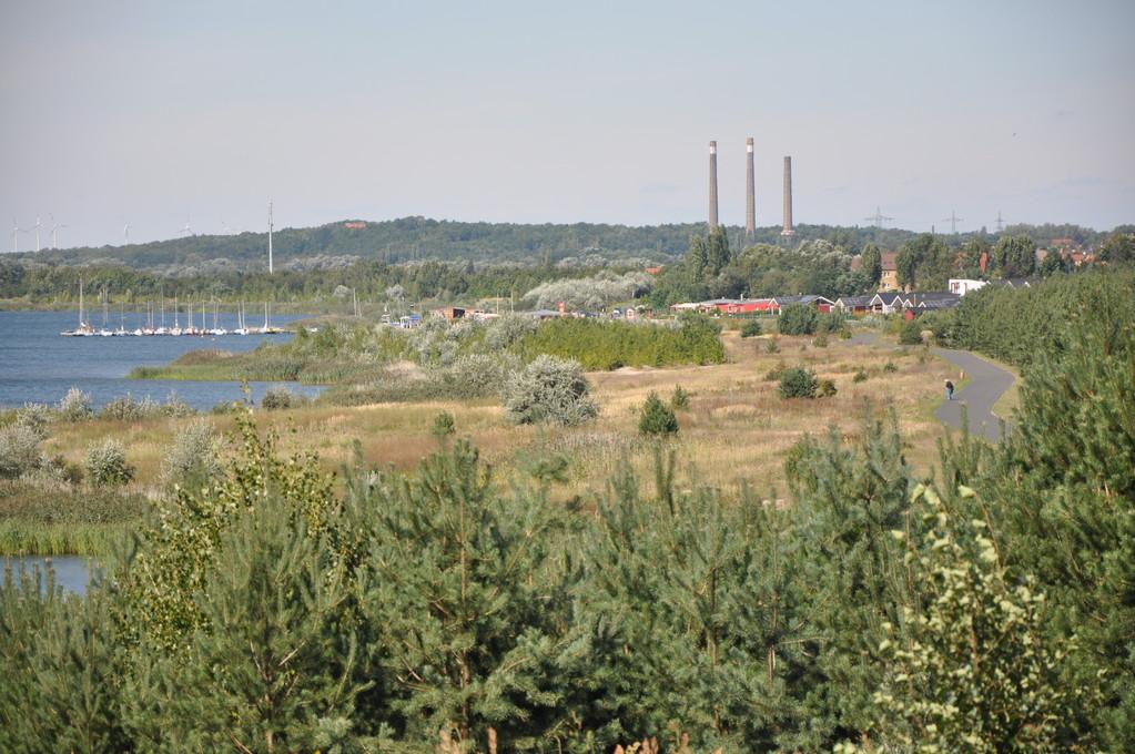 vor Pouch - im Hintergrund die alten Schornsteine des Bahnkraftwerkes Muldenstein (sie fallen am 10.04.2011)
