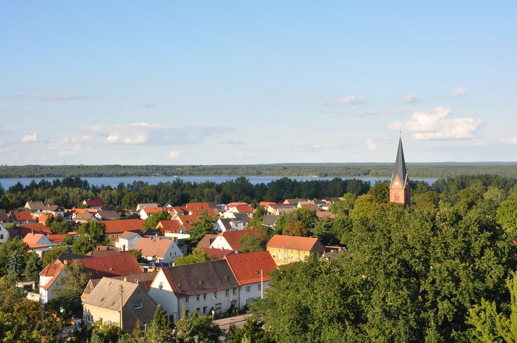 Blick vom Roten Turm Richtung Muldestausee und Dübener Heide