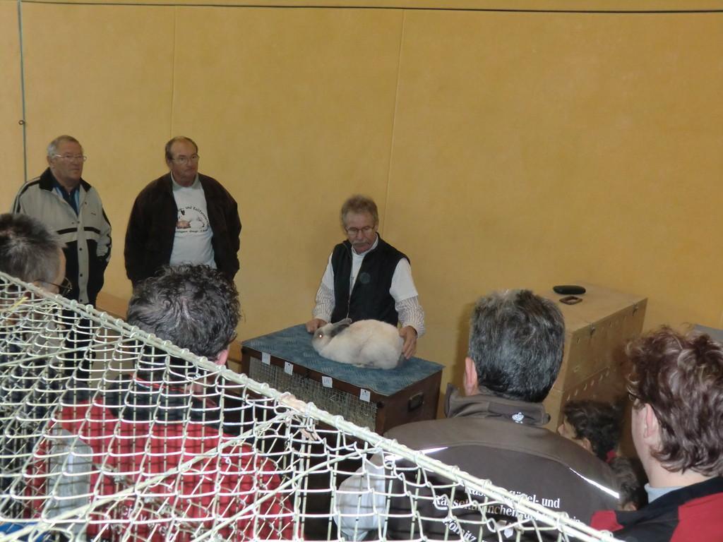 gegen 11.00 Uhr ging es in die Halle zur Tierbesprechung