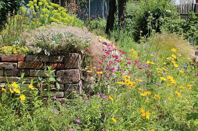 Bunter Naturgarten - Foto: Eric Neuling