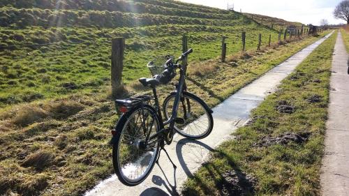 ein 7 Gang Fahrrad gegen ein Elektrorad...und immer schön gegen den Wind