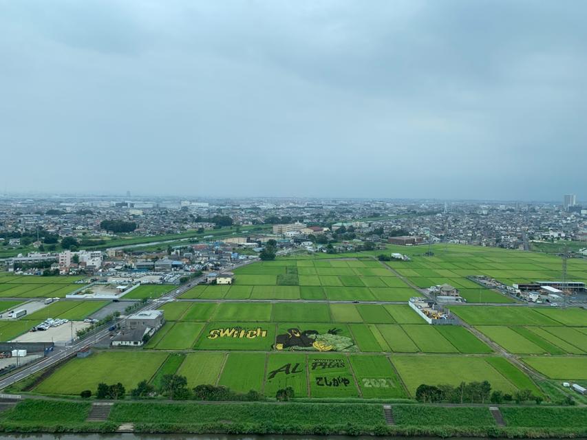 東埼玉資源環境組合展望台からの景色です🥰