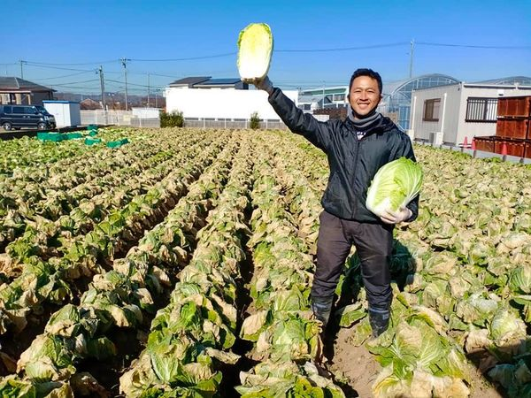 【特定技能】農閑期は帰国?季節労働に関する調査結果について
