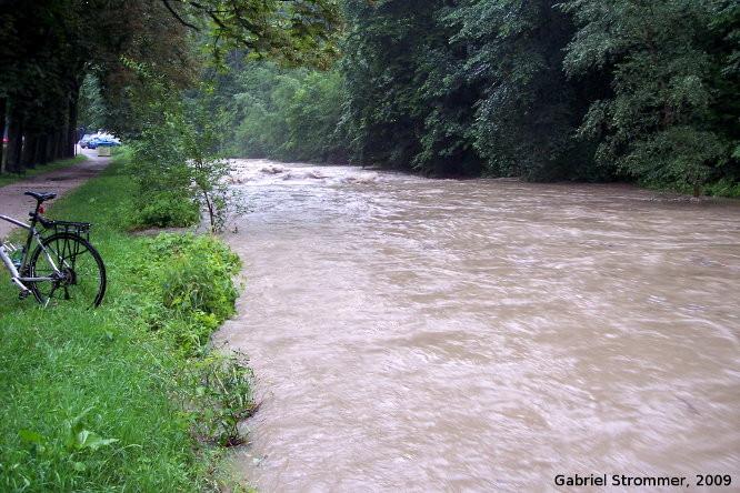 Hochwasser führender Wienfluss in Purkersdorf am 26. Juni 2009