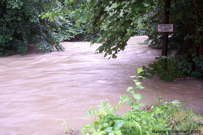 Hochwasser führender Wienfluss in Untertullnerbach am 26. Juni 2009