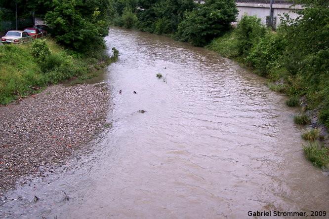 Wienfluss in Wien-Weidlingau zu Beginn des Hochwassers vom 26. Juni 2009 um rund 18:20
