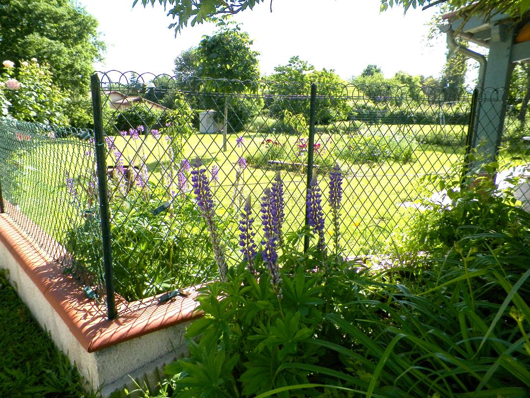 Accès au jardin