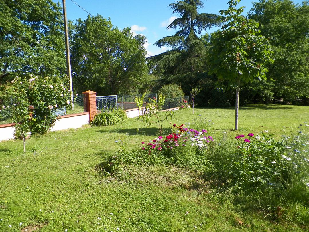 Vue d'une partie du jardin