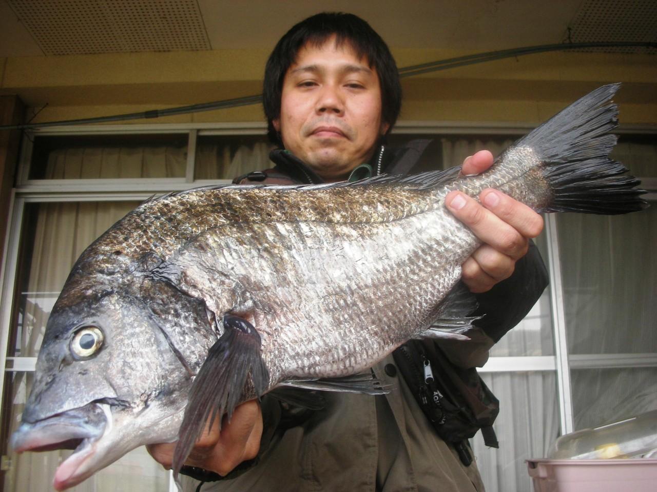 3月29日 初めての松島で黒川さん 50.2㎝