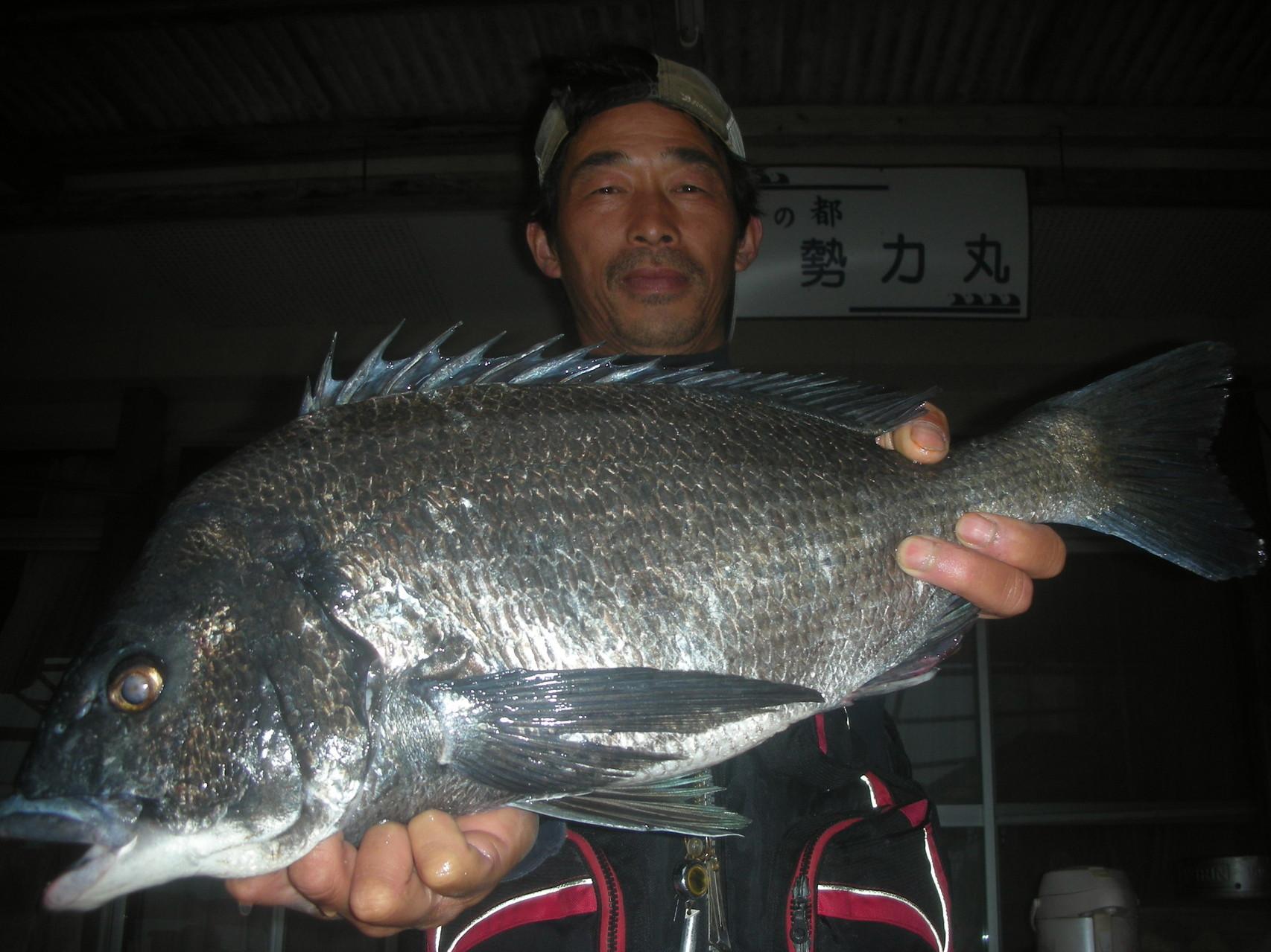 4月27日 河津さん 巨チヌ54.8㎝