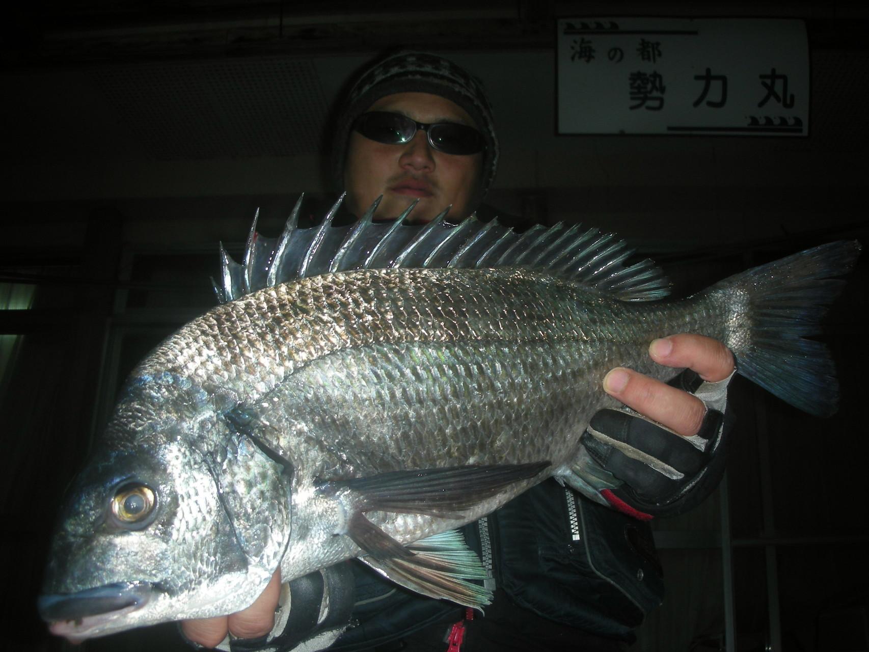 3月16日 中嶌さん ガバチヌ50.1㎝