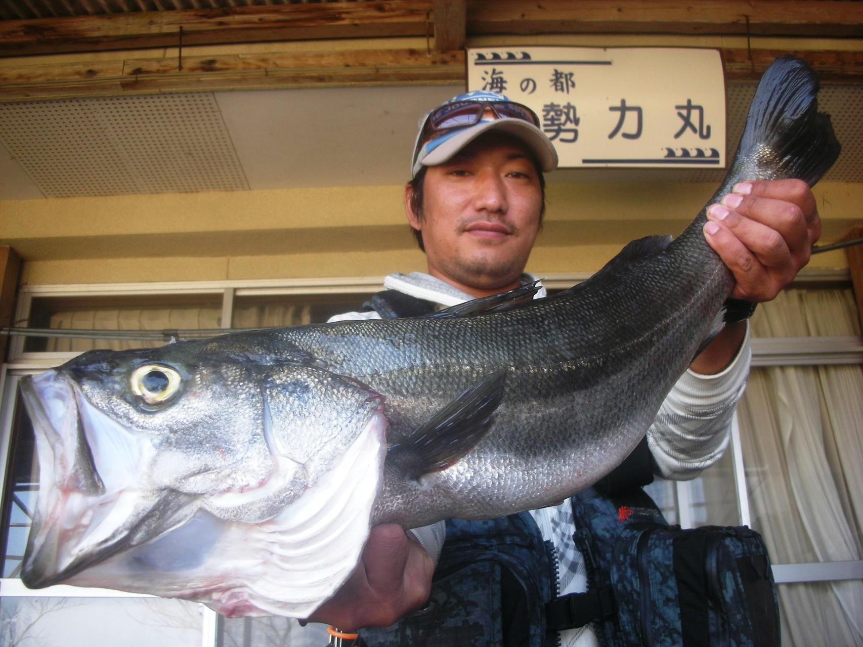 10月14日 ルアー釣りで古庄さん スズキ71.5㎝