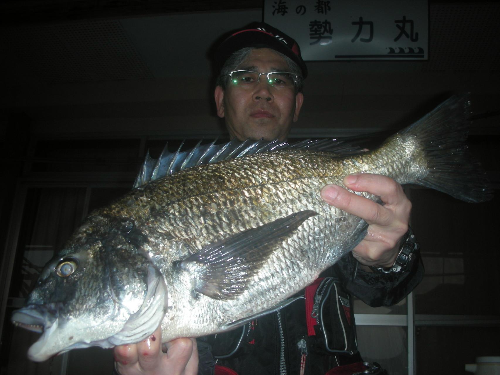 3月31日 米田さん ガバチヌ51㎝