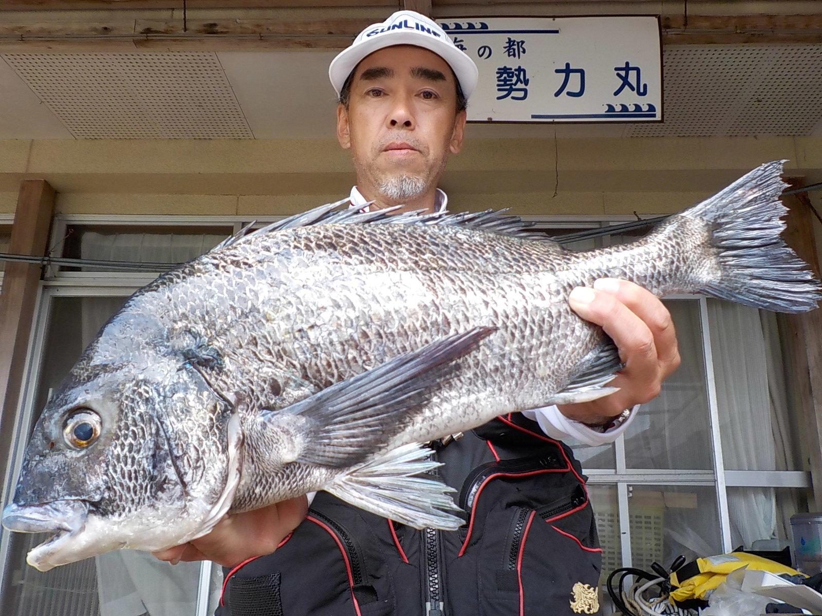 5月10日 磯釣りで桐原さん ガバチヌ50.5㎝