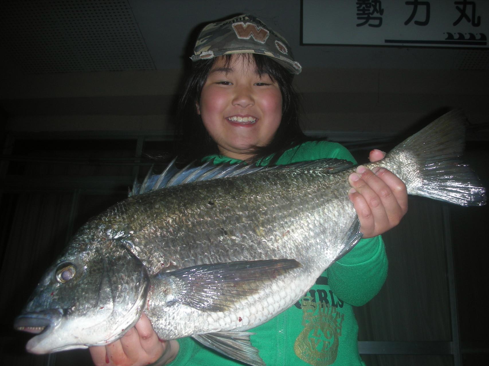 3月31日 藤井さん ガバチヌ52.7㎝