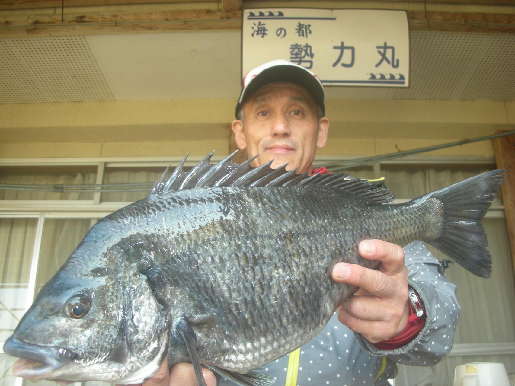 3月23日 多田さん ガバチヌ50.5㎝