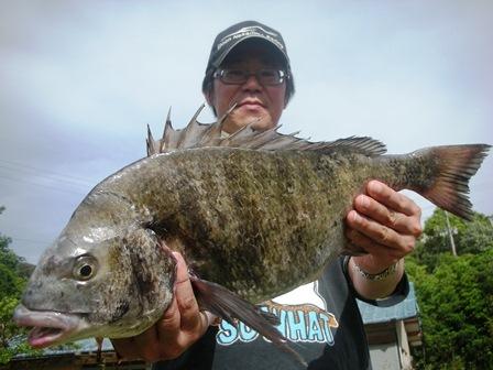5月13日 磯釣りでi池田さん 50.3㎝