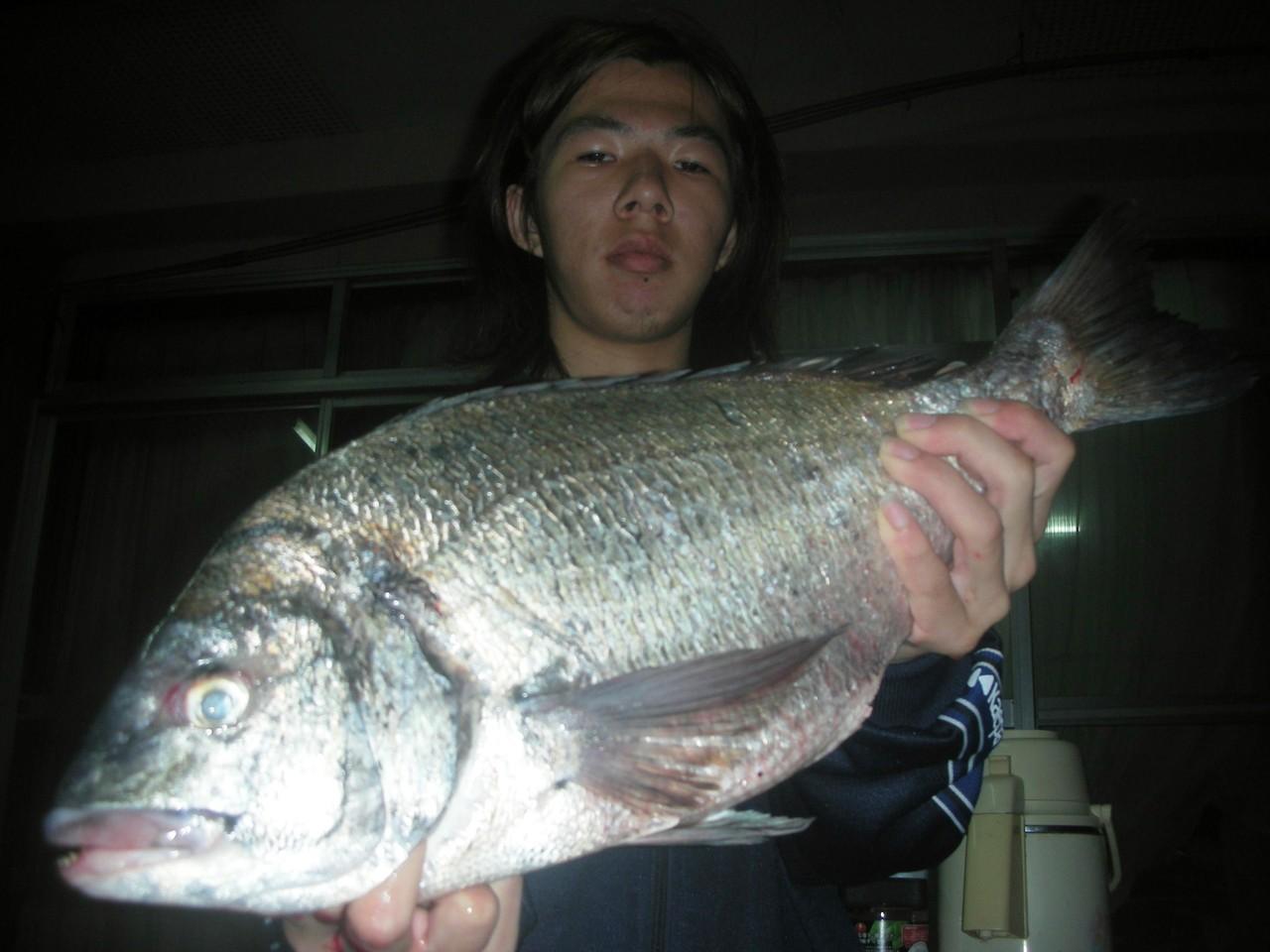 4月1日 磯釣りで下田 裕輝さん 52.6㎝